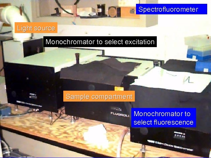 Spectrofluorometer Light source Monochromator to select excitation Sample compartment Monochromator to select fluorescence