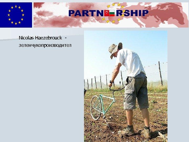 Nicolas Haezebrouck зеленчукопроизводител