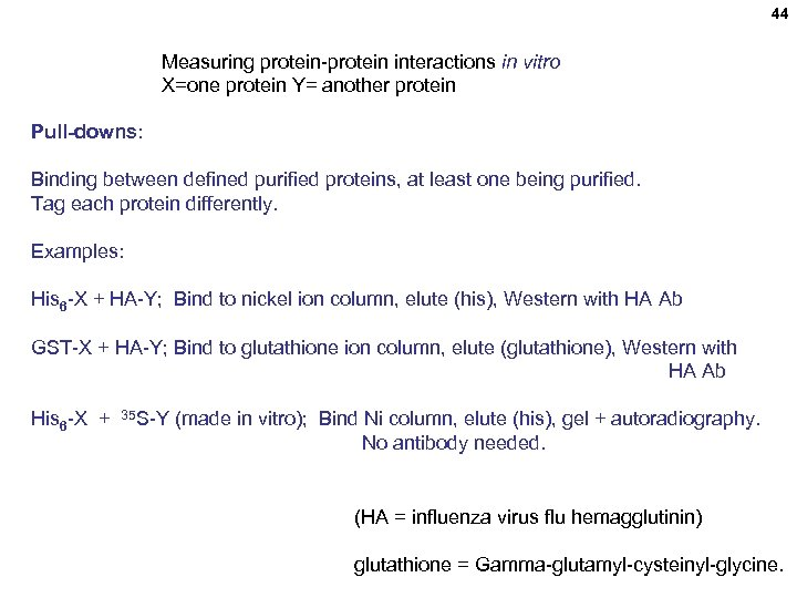 44 Measuring protein-protein interactions in vitro X=one protein Y= another protein Pull-downs: Binding between