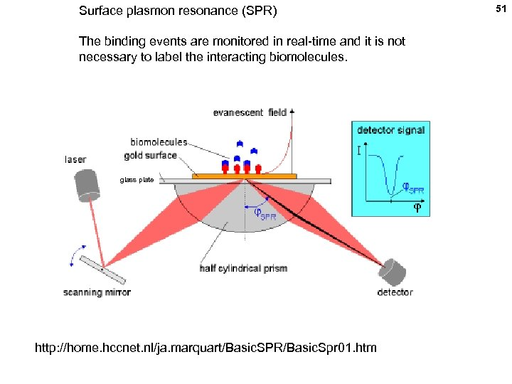 Surface plasmon resonance (SPR) The binding events are monitored in real-time and it is