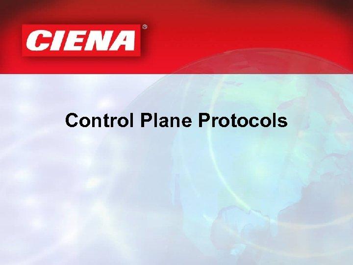 Control Plane Protocols