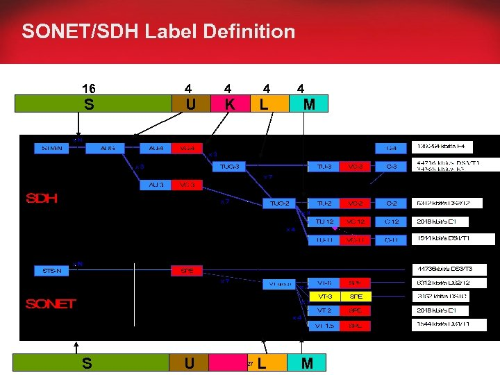 SONET/SDH Label Definition 16 4 4 S U K L M U S U