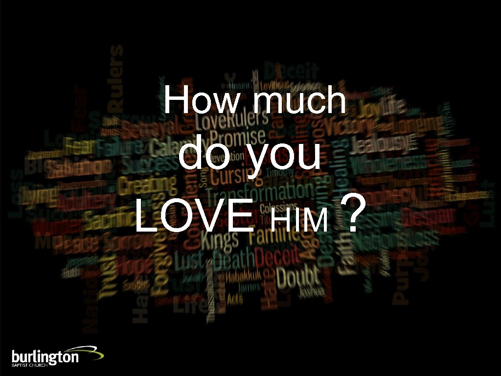 How much do you LOVE HIM ?