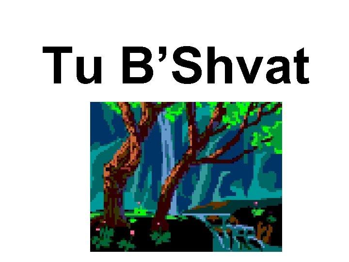 Tu B'Shvat