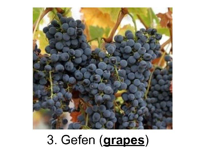 3. Gefen (grapes)