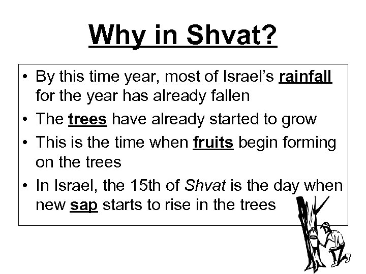 Why in Shvat? • By this time year, most of Israel's rainfall for the