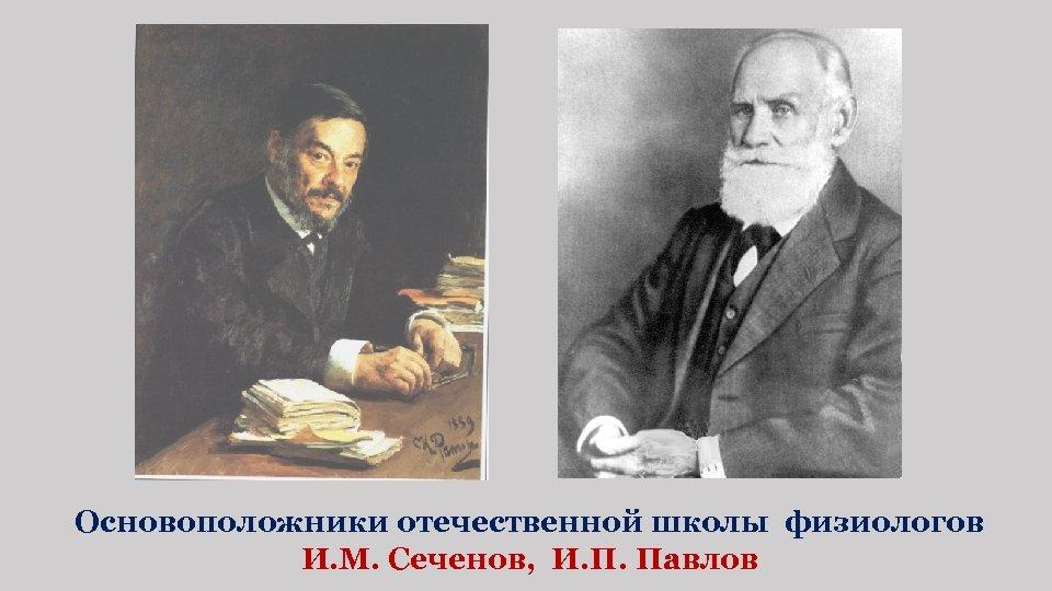 Основоположники отечественной школы физиологов И. М. Сеченов, И. П. Павлов