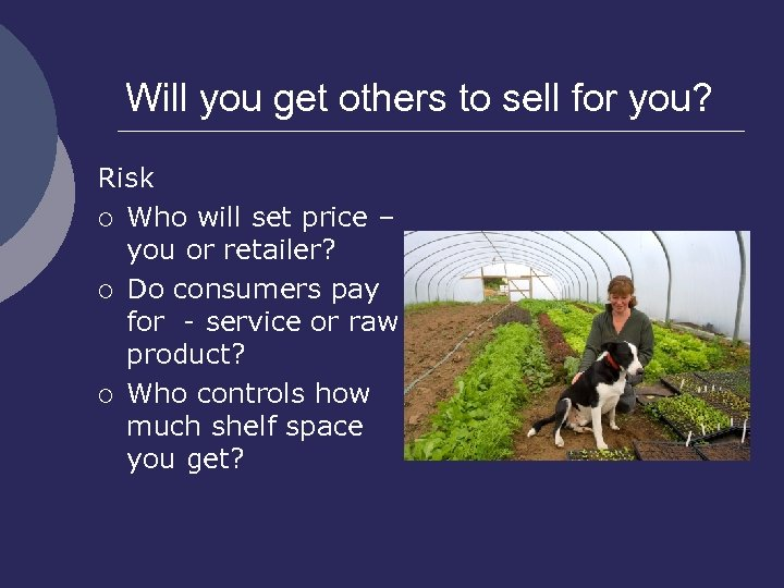 Will you get others to sell for you? Risk ¡ Who will set price