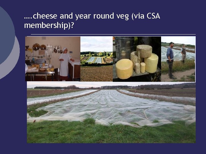 …. cheese and year round veg (via CSA membership)?