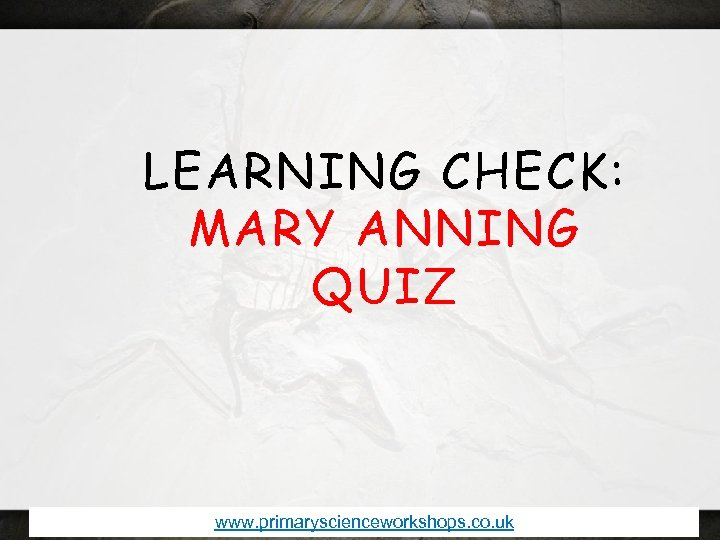 LEARNING CHECK: MARY ANNING QUIZ www. primaryscienceworkshops. co. uk