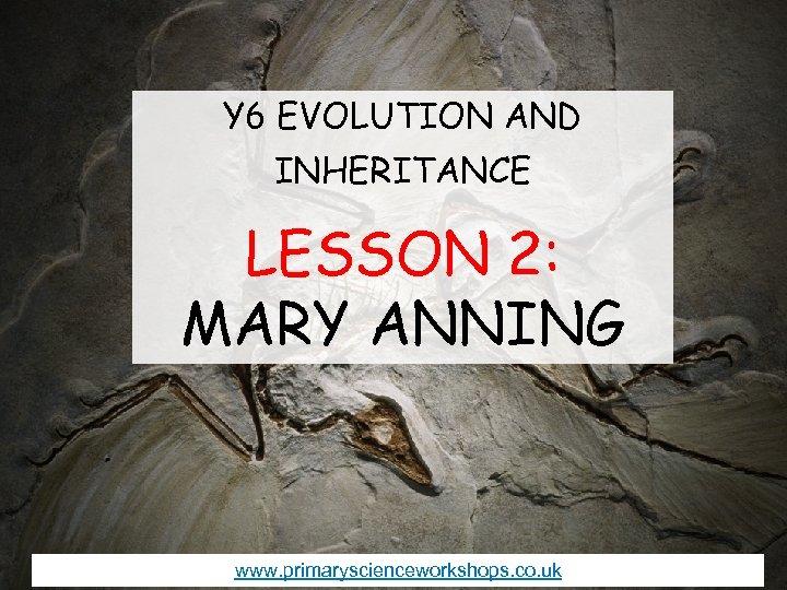 Y 6 EVOLUTION AND INHERITANCE LESSON 2: MARY ANNING www. primaryscienceworkshops. co. uk