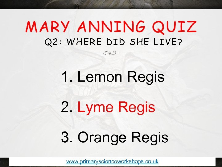 Q 2: WHERE DID SHE LIVE? 1. Lemon Regis 2. Lyme Regis 3. Orange