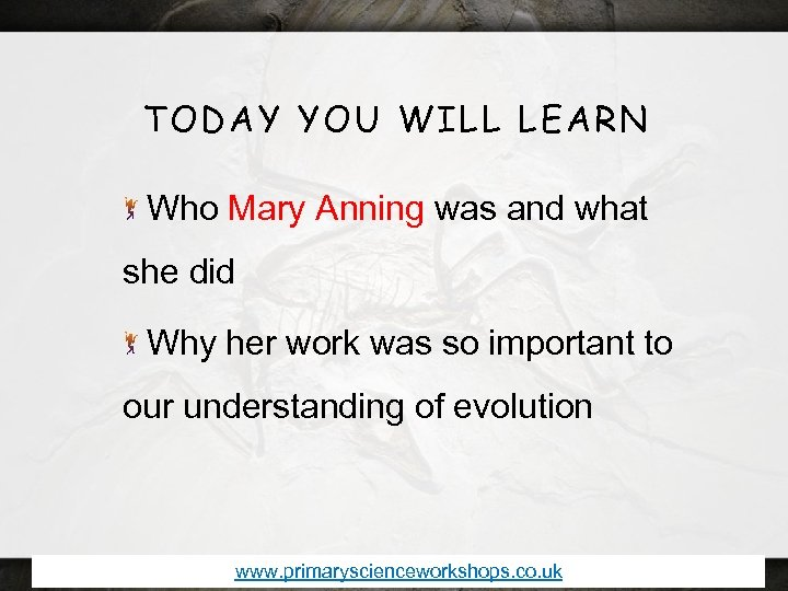 TODAY YOU WILL LEARN Who Mary Anning was and what she did Why her