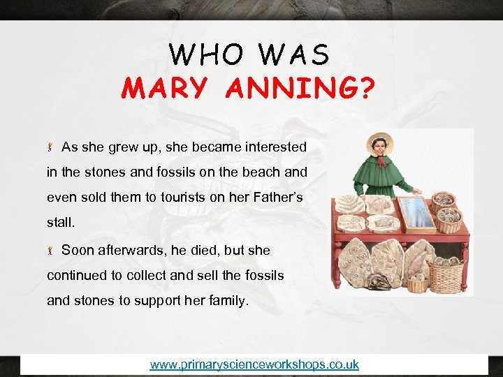 WHO WAS MARY ANNING? As she grew up, she became interested in the stones