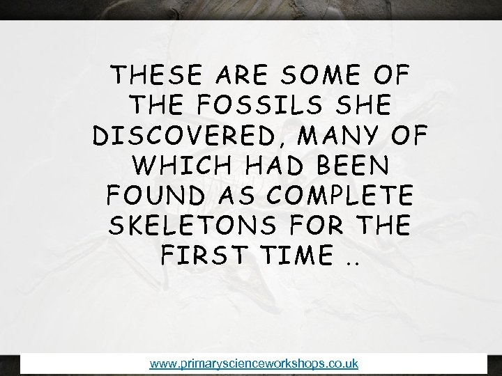THESE ARE SOME OF THE FOSSILS SHE DISCOVERED, MANY OF WHICH HAD BEEN FOUND