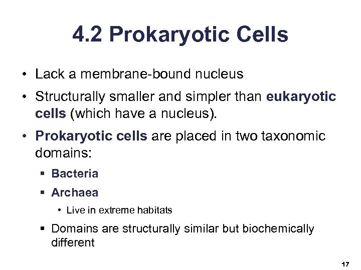 4. 2 Prokaryotic Cells • Lack a membrane-bound nucleus • Structurally smaller and simpler