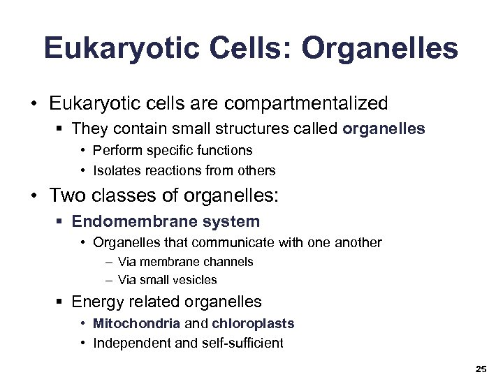 Eukaryotic Cells: Organelles • Eukaryotic cells are compartmentalized § They contain small structures called