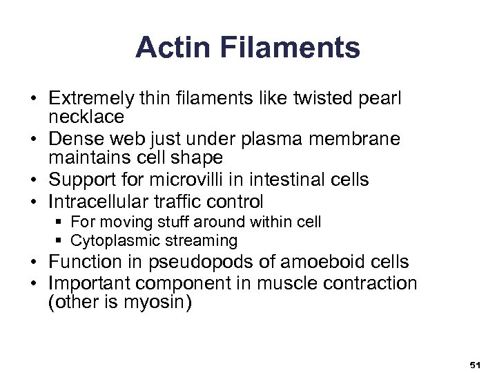 Actin Filaments • Extremely thin filaments like twisted pearl necklace • Dense web just