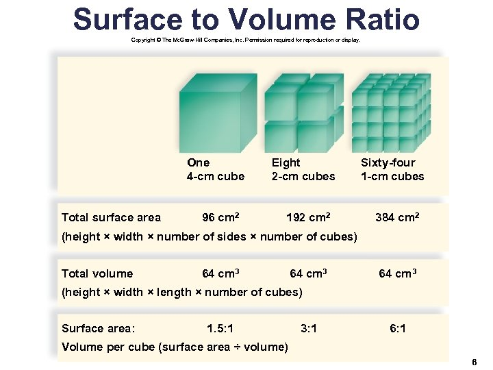 Surface to Volume Ratio Copyright © The Mc. Graw-Hill Companies, Inc. Permission required for