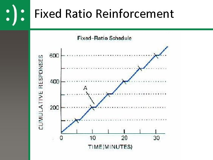 Fixed Ratio Reinforcement