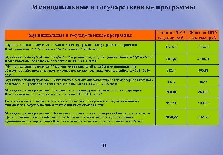 Муниципальные и государственные программы 12