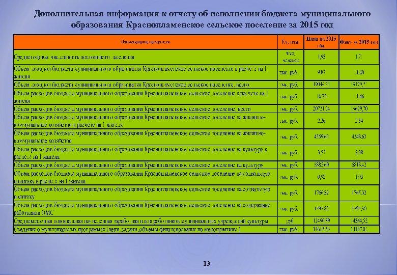 Дополнительная информация к отчету об исполнении бюджета муниципального образования Краснопламенское сельское поселение за 2015