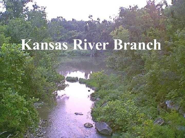 Kansas River Branch