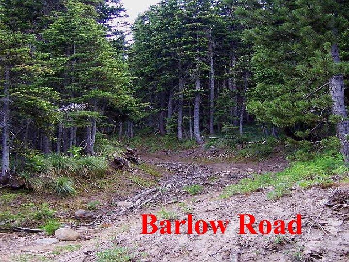 Barlow Road