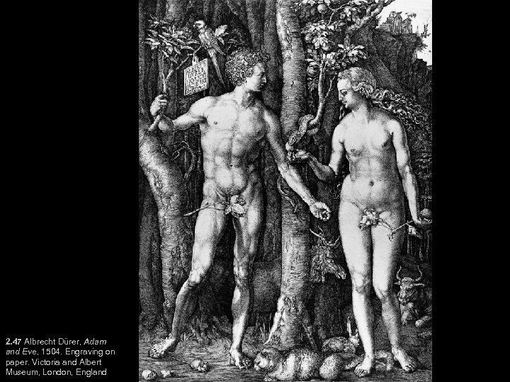 2. 47 Albrecht Dürer, Adam and Eve, 1504. Engraving on paper. Victoria and Albert