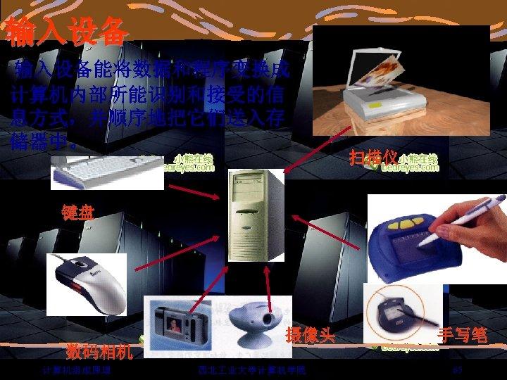 输入设备能将数据和程序变换成 计算机内部所能识别和接受的信 息方式,并顺序地把它们送入存 储器中。 扫描仪 键盘 数码相机 计算机组成原理 摄像头 西北 业大学计算机学院 手写笔 65