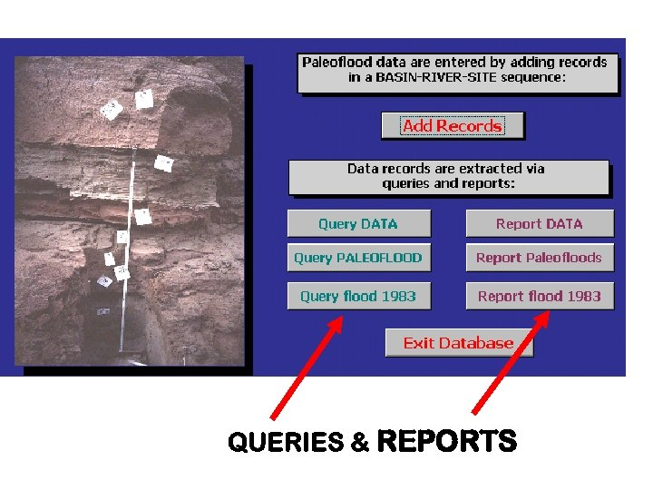 QUERIES & REPORTS