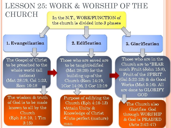 LESSON 25: WORK & WORSHIP OF THE CHURCH In the N. T. , WORK/FUNCTION