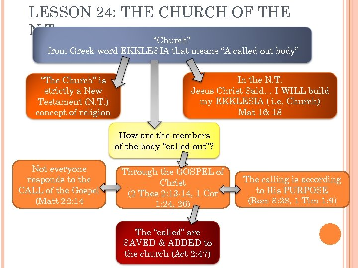 "LESSON 24: THE CHURCH OF THE N. T. ""Church"" -from Greek word EKKLESIA that"