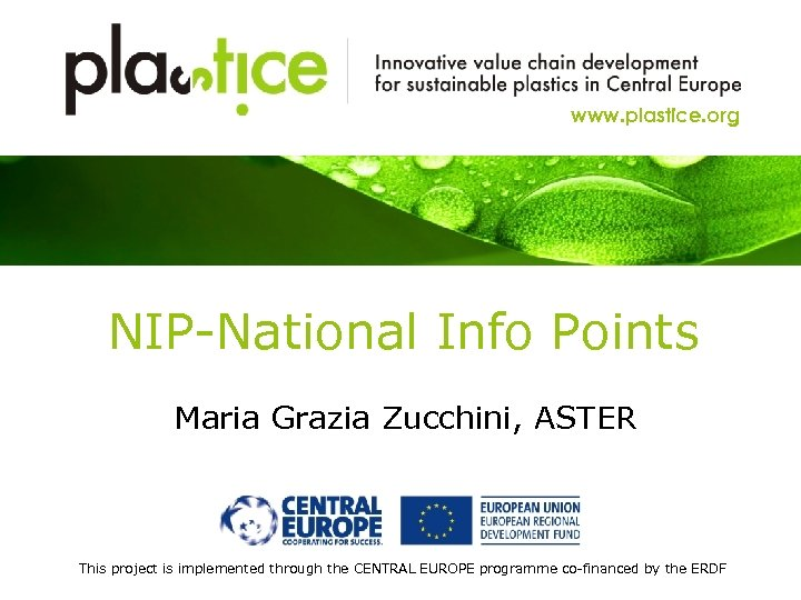 www. plastice. org NIP-National Info Points Maria Grazia Zucchini, ASTER This project is implemented