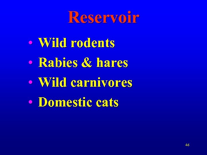 Reservoir • • Wild rodents Rabies & hares Wild carnivores Domestic cats 46