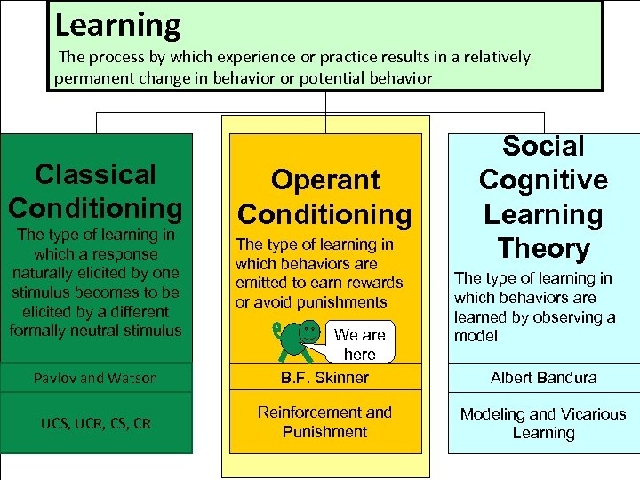Learning The process by which experience or practice results in a relatively permanent change