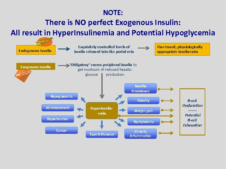 NOTE: There is NO perfect Exogenous Insulin: All result in Hyper. Insulinemia and Potential