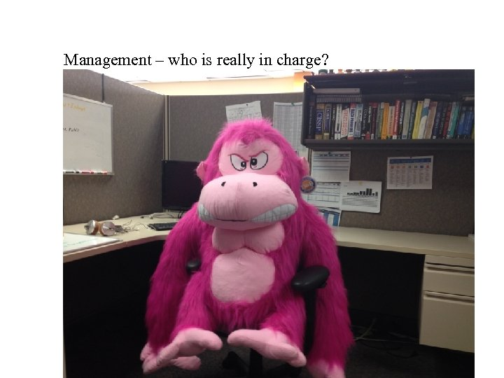 Management – who is really in charge?