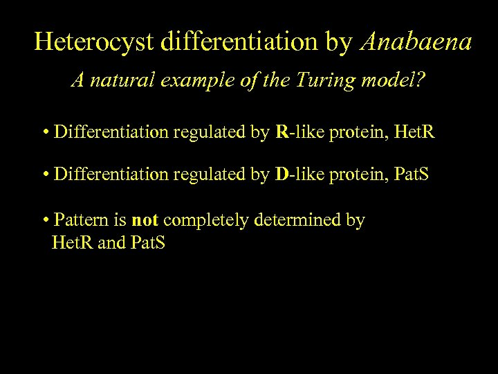 Heterocyst differentiation by Anabaena A natural example of the Turing model? • Differentiation regulated