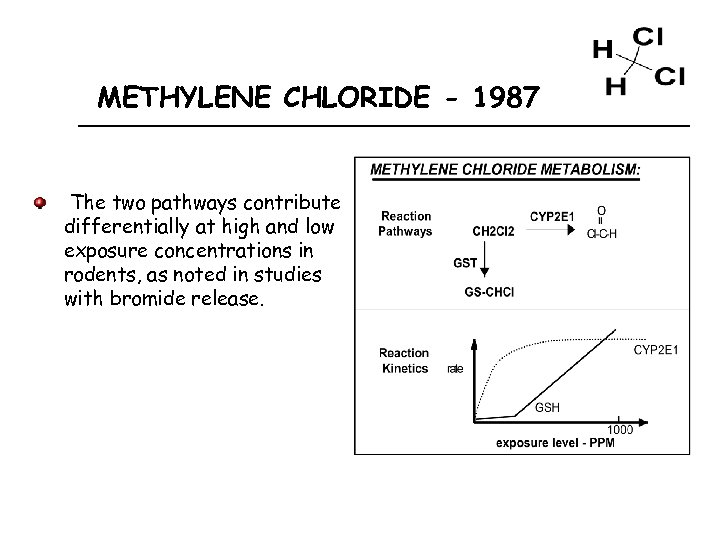 METHYLENE CHLORIDE - 1987 The two pathways contribute differentially at high and low exposure