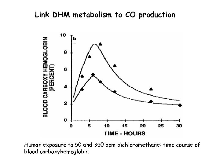 Link DHM metabolism to CO production Human exposure to 50 and 350 ppm dichloromethane: