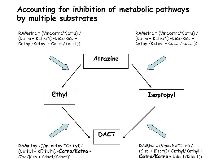 Accounting for inhibition of metabolic pathways by multiple substrates RAMatra = (Vmaxatra*Catra) / (Catra