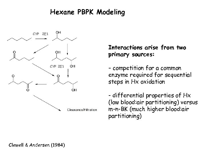 Hexane PBPK Modeling CYP 2 E 1 Interactions arise from two primary sources: CYP