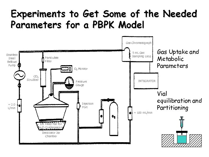 Experiments to Get Some of the Needed Parameters for a PBPK Model Gas Chromatograph