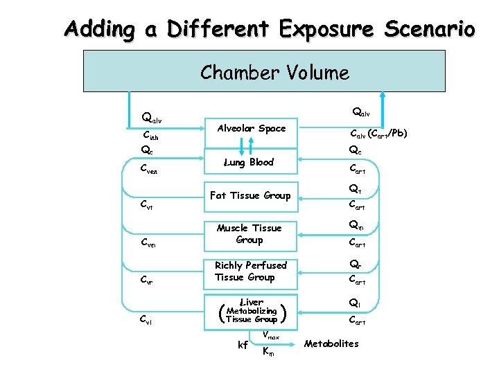 Adding a Different Exposure Scenario Chamber Volume Qalv Cinh Qc Cven Cvt Qalv Alveolar