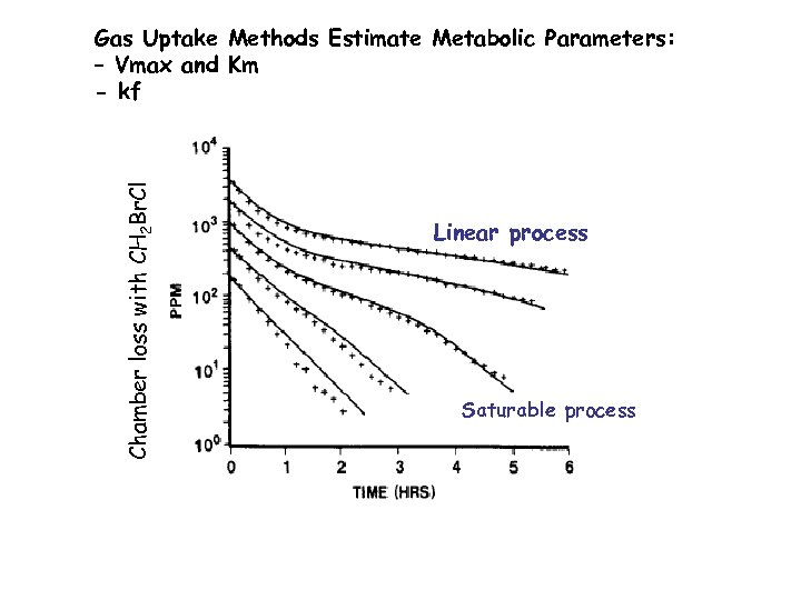 Chamber loss with CH 2 Br. Cl Gas Uptake Methods Estimate Metabolic Parameters: –