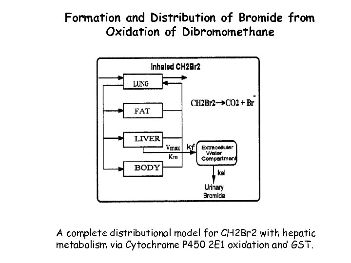 Formation and Distribution of Bromide from Oxidation of Dibromomethane kf A complete distributional model