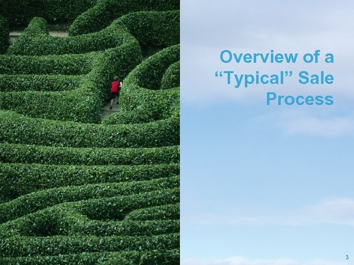"""Overview of a """"Typical"""" Sale Process Pricewaterhouse. Coopers LLP 3"""