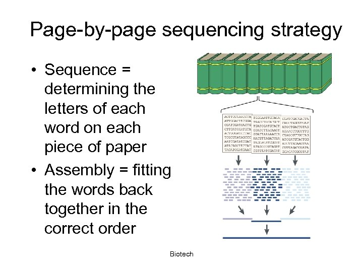 Page-by-page sequencing strategy • Sequence = determining the letters of each word on each