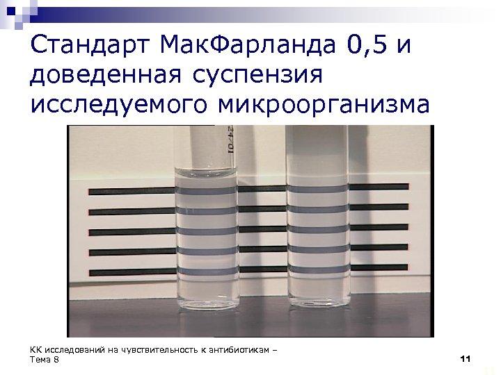 Стандарт Мак. Фарланда 0, 5 и доведенная суспензия исследуемого микроорганизма КК исследований на чувствительность